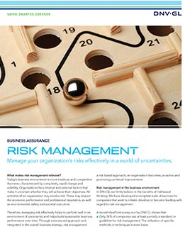 Risk Management flyer